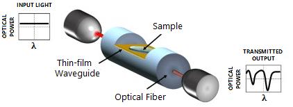 Optical biosensors based on resonances. Setup for SPR and LMR generation in optical fiber.