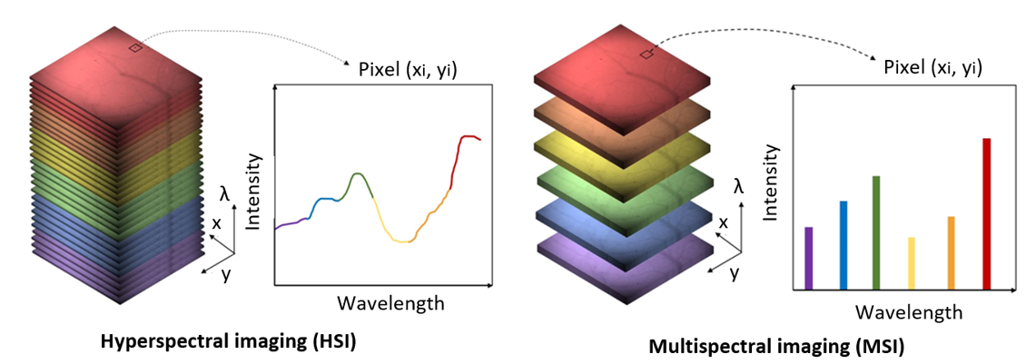 Comparison between hyperspectral (HSI) and multispectral imaging (MSI).