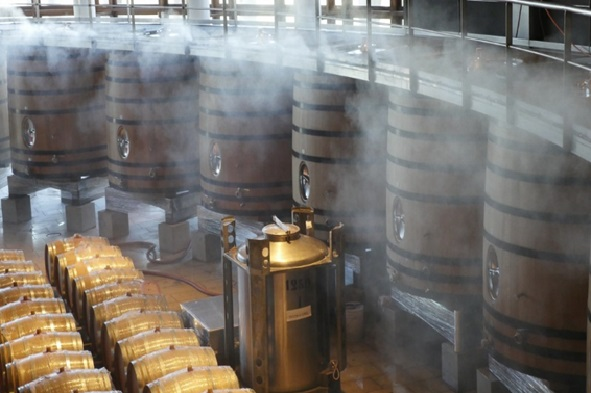 NIR spectroscopy applied to the wine industry